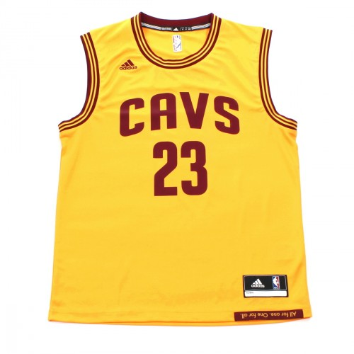 MAILLOT INT REPLICA LEBRON JAMES
