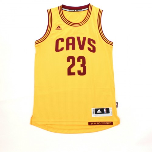 Maillot NBA Swingman Lebron James